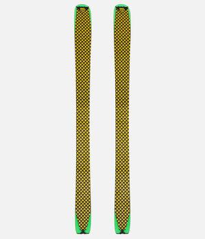 101114-yellow-black-vg